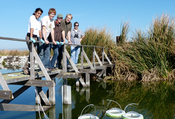 Ames scientists and students from the Undergraduate Student Research Program and Foothill DeAnza Community College worked with the Sunnyvale Water Pollution Control Plant, Calif., to measure the methane oxidized by microbes in its open ponds. Credit: Drew Detweiler