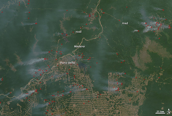 A NASA satellite captured this image of active fires along the Madeira River in Brazil in 2010, a year that had unusually high fire activity. Fires are shown in red and plumes of gray smoke are visible. Credit: NASA/Earth Observatory