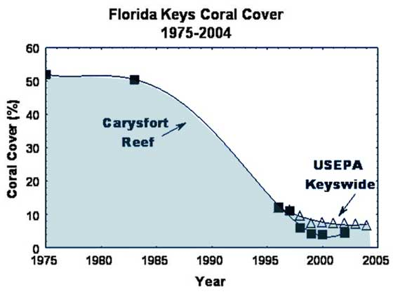There was a 92 percent loss of living coral on Carysfort between 1975 and 2000. Credit: Dustan and Halas; FKNMS Coral Reef Evaluation and Monitoring Project.