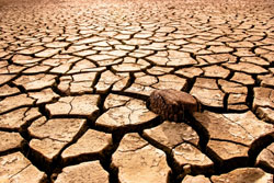 The effects of climate change will likely include more frequent droughts in some areas and heavier precipitation in others.