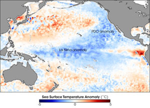 Cool waters in the tropical Pacific Ocean courtesy of La Niña, April 2008. La Niña helped make 2008 the coolest year of the last decade. The Pacific Decadal Oscillation (PDO) — a larger-scale, slower-cycling ocean pattern — can also be seen in this image, in its cool phase.