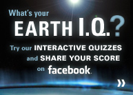 Interactive Quizzes - Click here