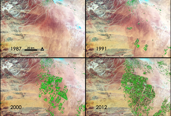 In this series of four Landsat images, the agricultural fields are about one kilometer across. Healthy vegetation appears bright green while dry vegetation appears orange. Barren soil is a dark pink, and urban areas, like the town of Tubarjal at the top of each image, have a purple hue. Credit: NASA/GSFC