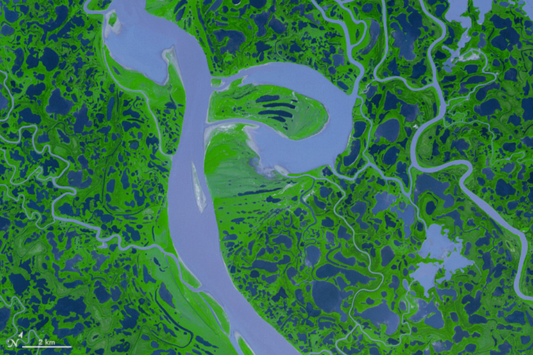 False-color image of the Mackenzie River Delta in Canada.