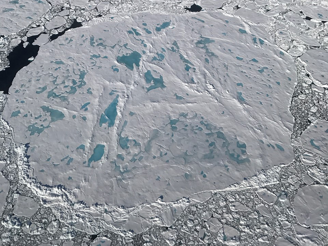A large circular sea ice floe covered with melt ponds and surrounded by smaller floes, as seen from an Operation IceBridge flight on July 17, 2017.