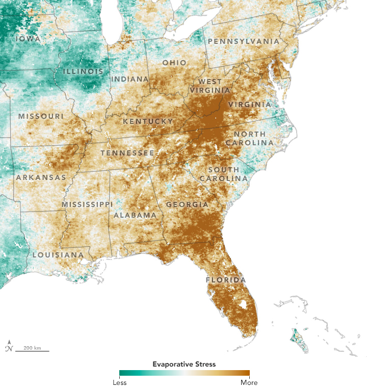 "The Evaporative Stress Index drought indicator captured a ""flash drought"" in the Eastern U.S. in 2019."