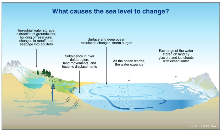Factors that contribute to sea level change.