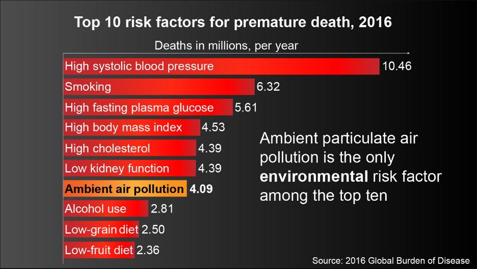 Top 10 risk factors for premature death, 2016