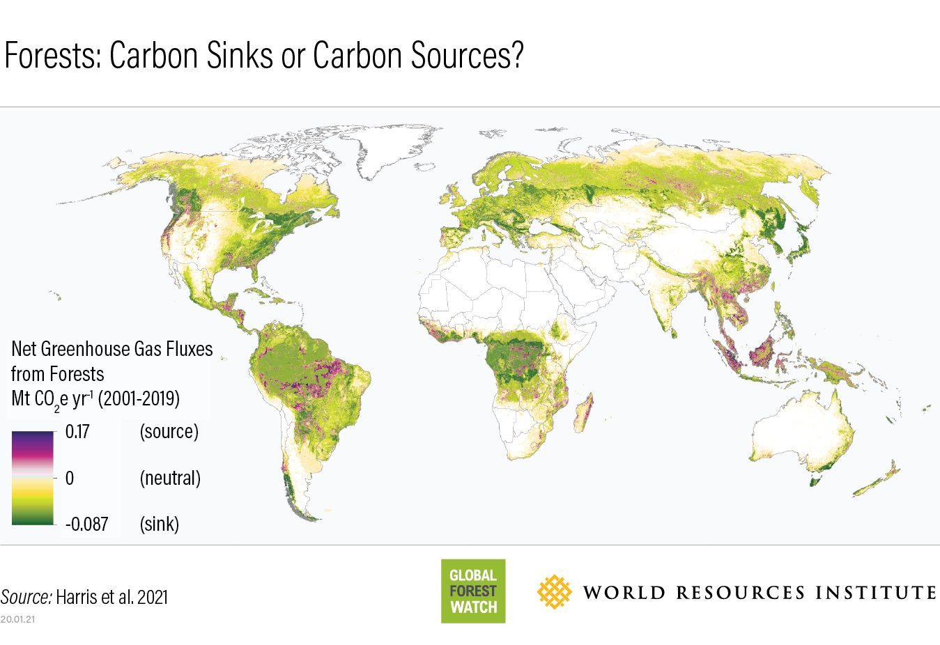 World map showing forested regions that are sources of carbon emissions (purple) and where they are carbon sinks (green).
