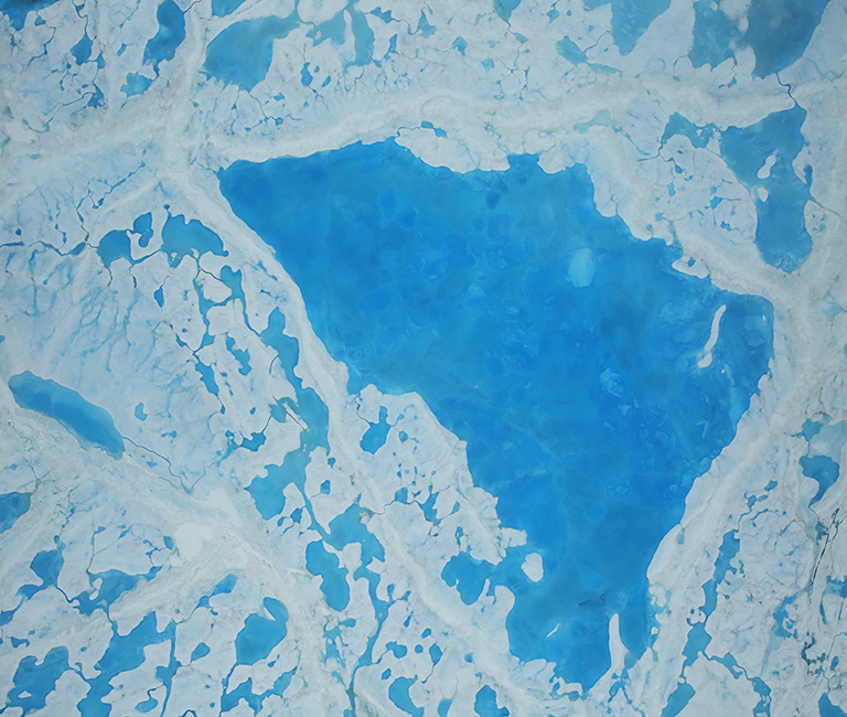 Arctic sea ice IceBridge melt pond