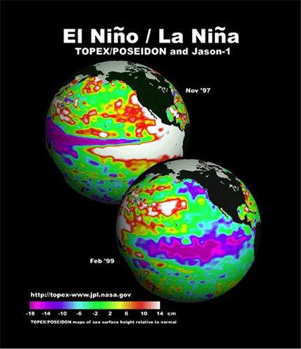 Maps of the sea surface height anomaly in the Pacific Ocean during the 'Godzilla' El Niño of 1997-1998, which was followed by two years of intense La Niña. Yellow and red areas indicate where the waters are relatively warmer and have expanded above normal sea level, while green indicates near-normal sea level, and blue and purple areas show where the waters are relatively colder and sea level is lower than normal. The temperature of the upper ocean can have a significant influence on weather patterns and climate. Click here to learn more.