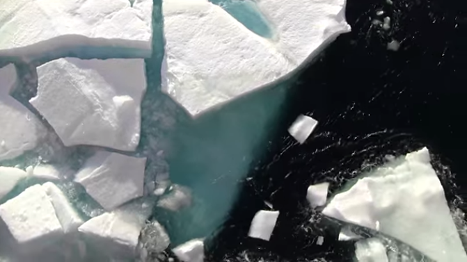 Four Decades of Sea Ice From Space: The Beginning