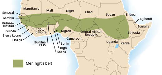 The African meningitis belt. Credit: World Health Organization