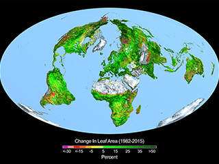 Carbon dioxide fertilization is greening the Earth