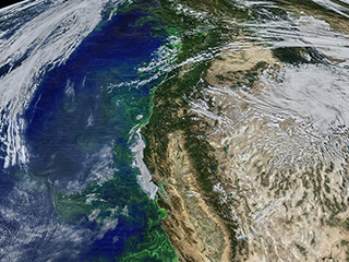 NASA, NSF plunge into ocean 'Twilight Zone' to explore ecosystem carbon flow