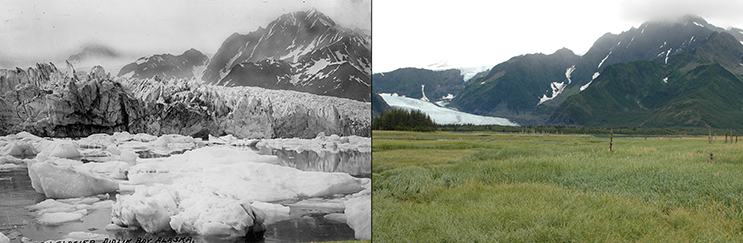 The retreat of Pedersen Glacier, Alaska. Left: summer 1917. Right: summer 2005. Credit: 1917 photo captured by Louis H. Pedersen; 2005 photo taken by Bruce F. Molnia. Source: The Glacier Photograph Collection, National Snow and Ice Data Center/World Data Center for Glaciology.
