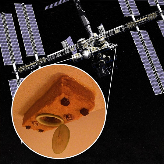 Pictured here is my edible CATS model that resembles the real instrument headed for the International Space Station (ISS).