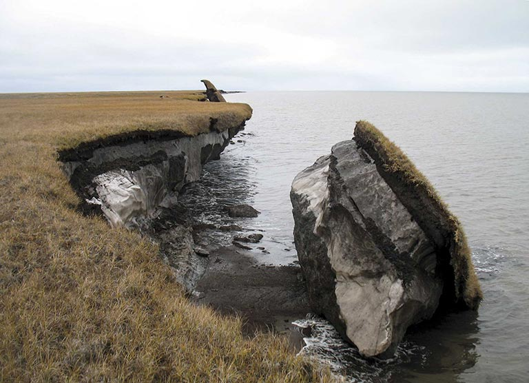 Collapsed permafrost block of coastal tundra on Alaska's Arctic Coast. Credit: U.S. Geological Survey