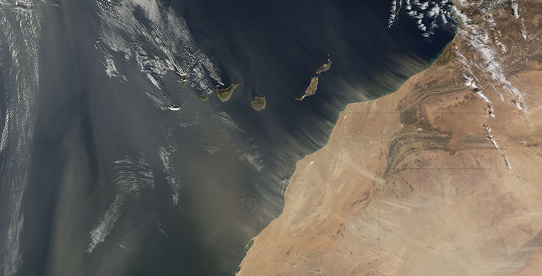 The Moderate Resolution Imaging Spectroradiometer (MODIS) on NASA's Terra satellite took this image of dust plumes off the coasts of Morocco and Western Sahara on January 20, 2008. Credit: NASA's Earth Observatory.