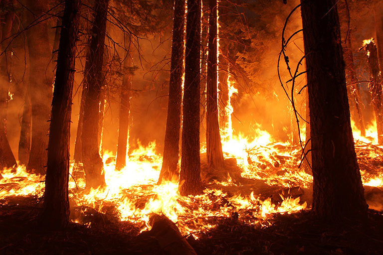 Study: Fire seasons getting longer, more frequent – Climate Change ...