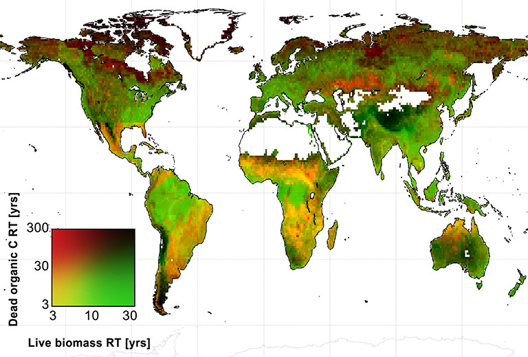 Global map of the average amount of time that live biomass carbon and dead organic carbon spend in carbon reservoirs around the world, in years. Credit: A. Anthony Bloom.