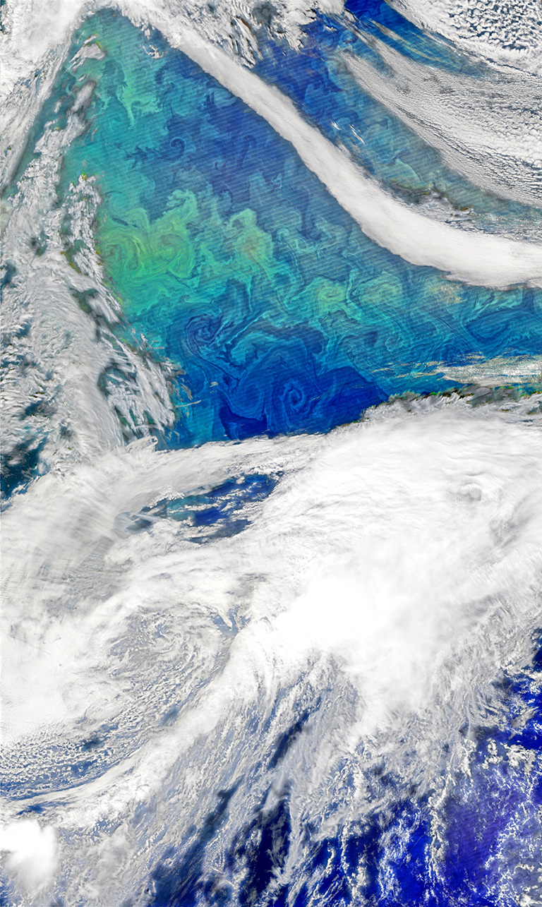 Each spring, the waters of the North Atlantic Ocean host a huge natural bloom of phytoplankton—microscopic, plant-like organisms that are important for carbon cycling and also could influence clouds and climate. Source: NASA's Earth Observatory. Credit: Norman Kuring, using VIIRS data from the Suomi National Polar-orbiting Partnership.