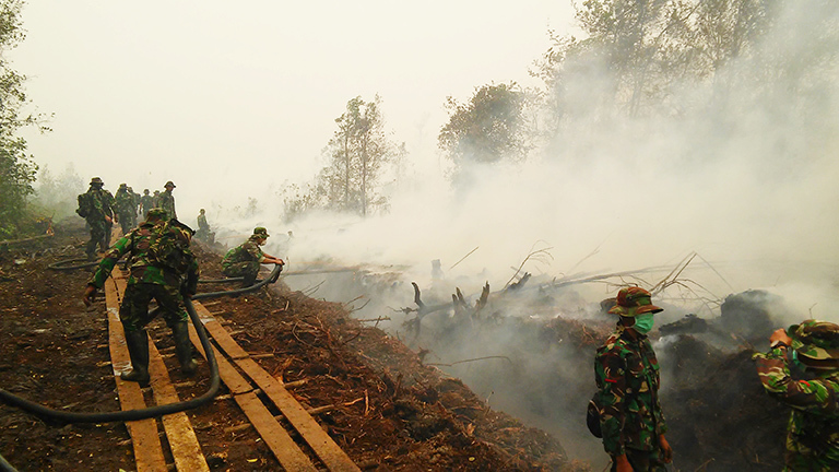 Indonesian military personnel fighting a large peat fire near the city of Palangkaraya in the Indonesian province of Central Kalimantan on Borneo. (October 14, 2015, David Gaveau, Center for International Forestry Research)