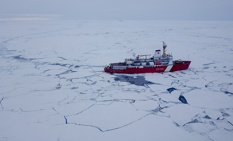 A Canadian Coast Guard icebreaker travels through the Beaufort Sea ice pack in September 2016. Credit: Alek Petty/NASA's Goddard Space Flight Center.