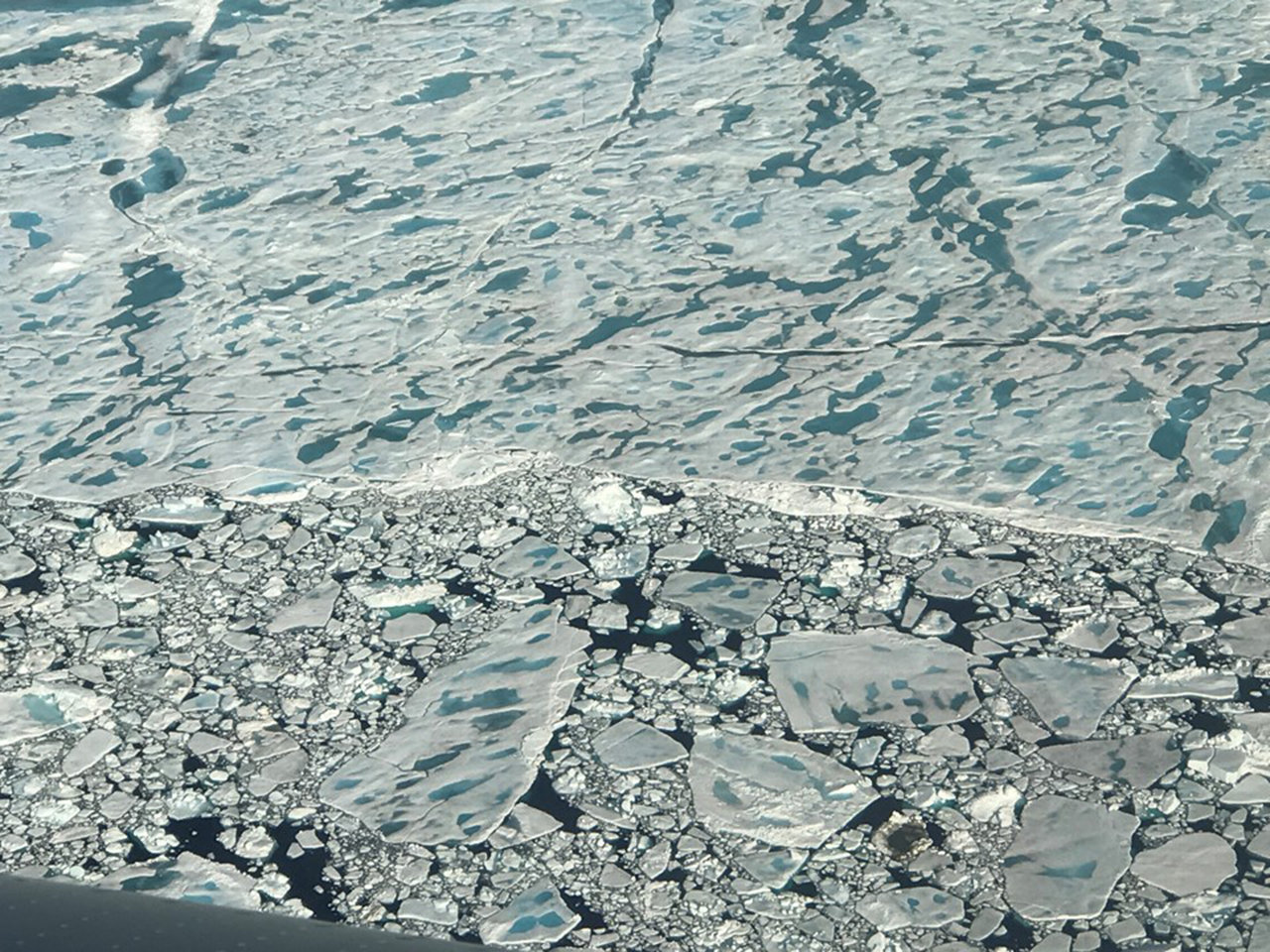 Many melt ponds on sea ice north of Greenland, as seen during an Operation IceBridge flight on July 24, 2017.
