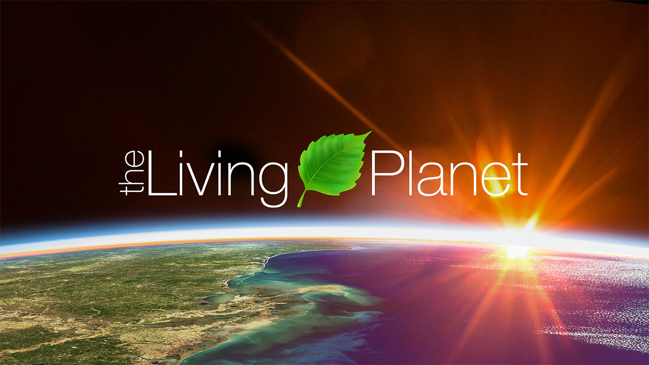 The Changing Colors Of Our Living Planet