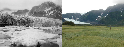 Pedersen Glacier, Alaska. Left: 1917. Right: 2005. Credits: 1917 photo captured by Louis H. Pedersen; 2005 photo taken by Bruce F. Molnia. From the Glacier Photograph Collection, National Snow and Ice Data Center/World Data Center for Glaciology.