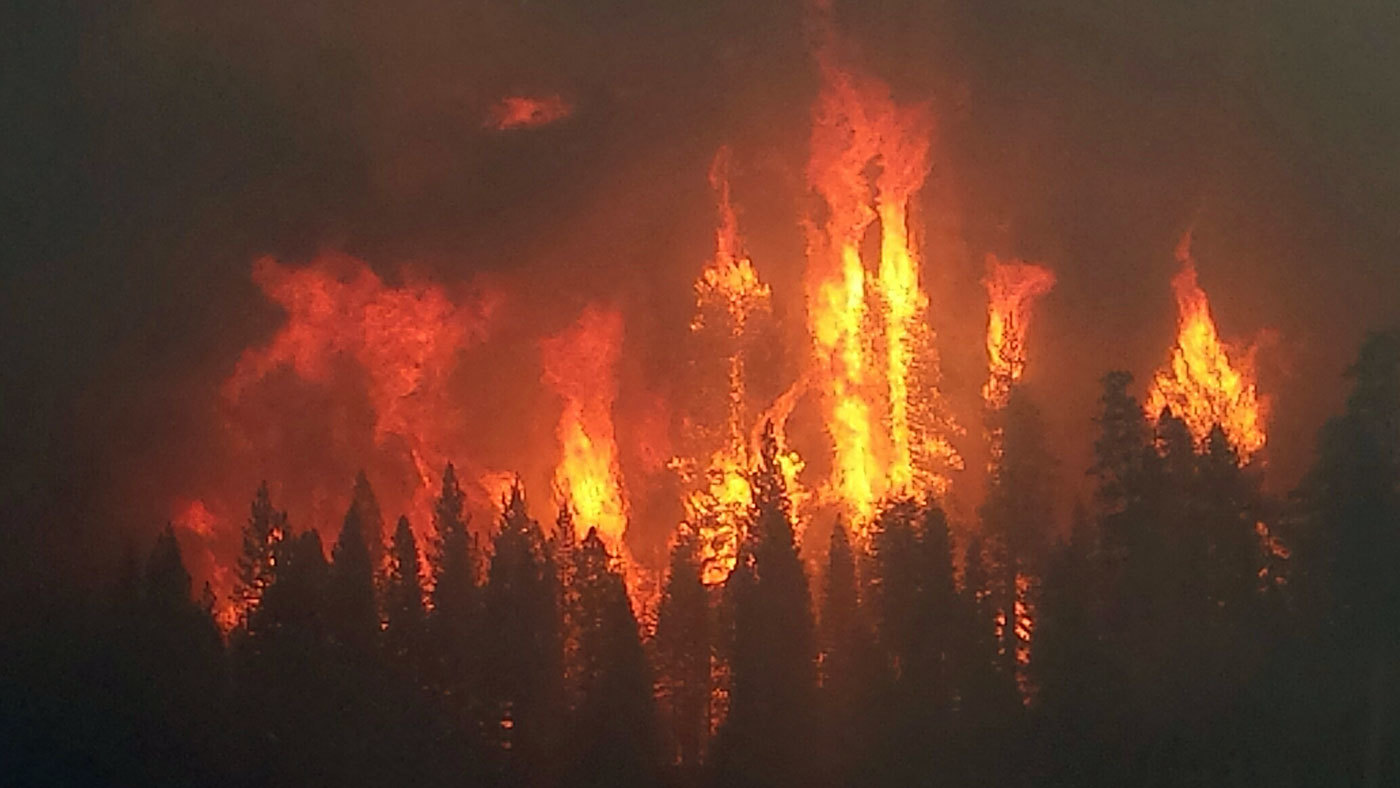 Local winds play a key role in some megafires – Climate Change: Vital Signs of the Planet