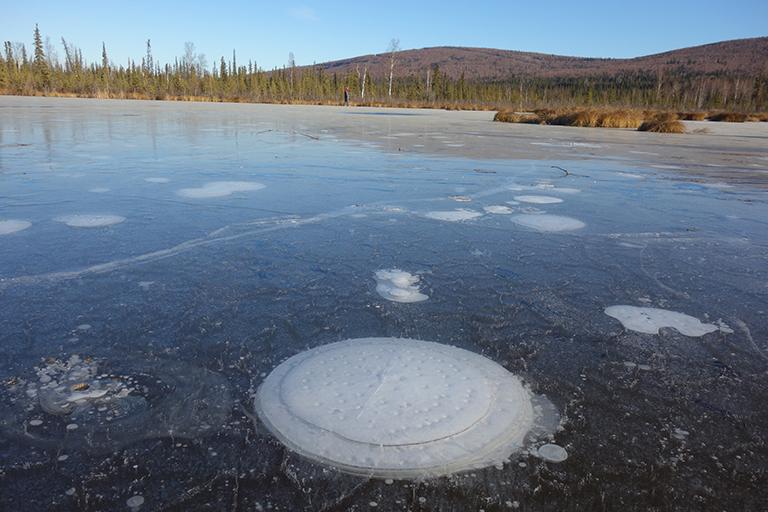 Climate Crisis Statement - Artic Permafrost Melt