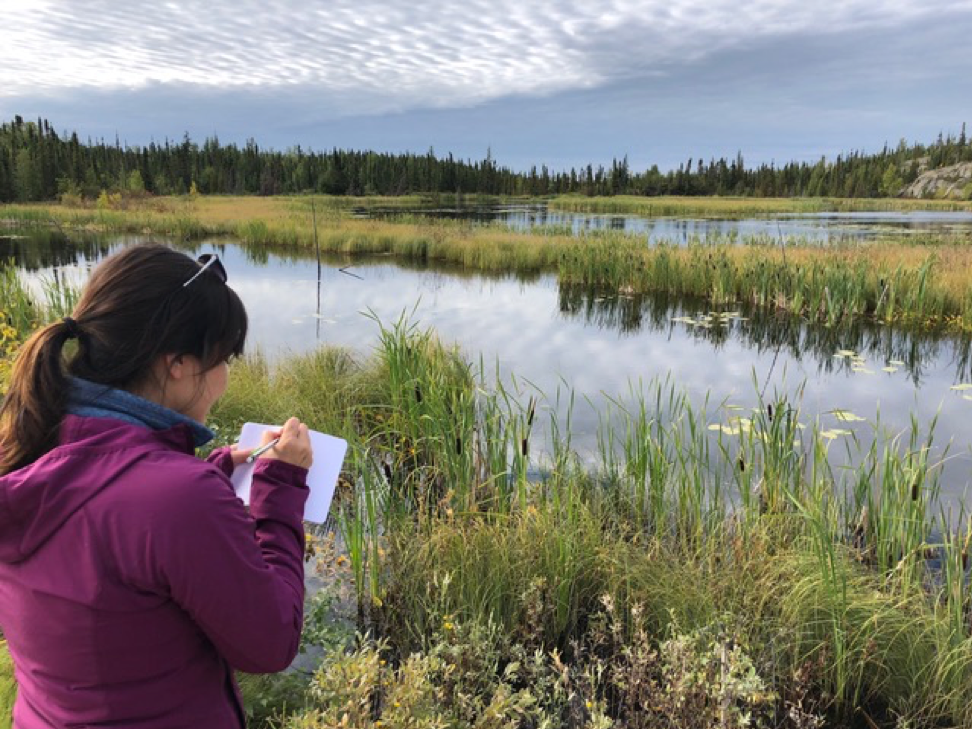 Joanne Speakman helps scientists map wetlands near the city of Yellowknife in the Northwest Territories, Canada. Credit: Paul Siqueira