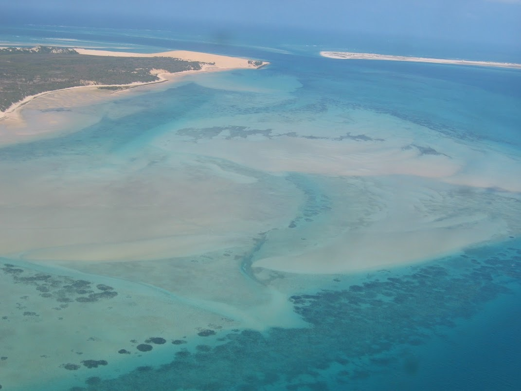 Sea grass ecosystem off Mozambique
