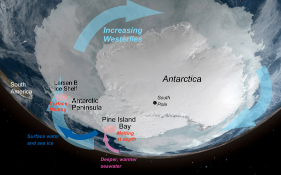 West Antarctica is seeing dramatic ice loss particularly the Antarctic Peninsula and Pine Island regions. Ice loss culprits include the loss off buttressing ice shelves, wind, and a sub-shelf channel that allows warm water to intrude below the ice. Credit: NASA/NSIDC
