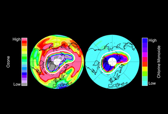 Left: Ozone in Earth's stratosphere at an altitude of approximately 12 miles (20 kilometers) in mid-March 2011, near the peak of the 2011 Arctic ozone loss. Red colors represent high levels of ozone, while purple and grey colors (over the north polar region) represent very small ozone amounts. Right: chlorine monoxide – the primary agent of chemical ozone destruction in the cold polar lower stratosphere – for the same day and altitude. Light blue and green colors represent small amounts of chlorine monoxide, while dark blue and black colors represent very large chlorine monoxide amounts. The white line marks the area within which the chemical ozone destruction took place. Image credit: NASA/JPL-Caltech