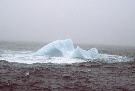Iceberg off the coast of Newfoundland, 1984. Credit: Susan Digby.