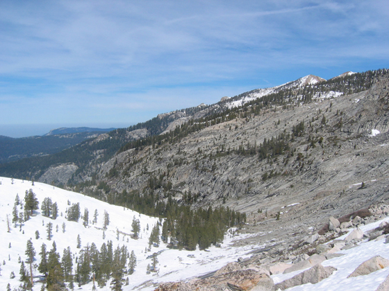 A Sierra Nevada forest in Sequoia National Park, Calif. Forest patterns are correlated to snow depth.