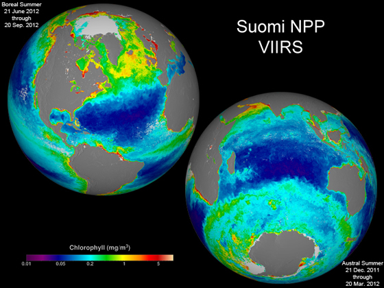 These two images are season-long composites of ocean chlorophyll concentrations derived from visible radiometric measurements made by the VIIRS instrument on Suomi NPP. The date ranges of the two composites are included in the individual images. These false-colored images make the data stand out. The purple and blue colors represent lower chlorophyll concentrations. The oranges and reds represent higher chlorophyll concentrations. These differences in color indicate areas with lesser or greater phytoplankton biomass. Credit: NASA/Suomi NPP/Norman Kuring