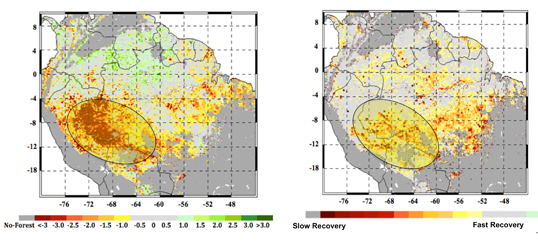 At left, the extent of the 2005 megadrought in the western Amazon rainforests during the summer months of June, July and August as measured by NASA satellites. The most impacted areas are shown in shades of red and yellow. The circled area in the right panel shows the extent of the forests that experienced slow recovery from the 2005 drought, with areas in red and yellow shades experiencing the slowest recovery. Image credit: NASA/JPL-Caltech/GSFC