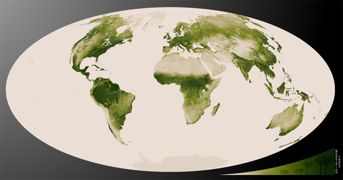 World map of vegetation created with Suomi NPP data. Credit: NASA/NOAA View NOAA animation