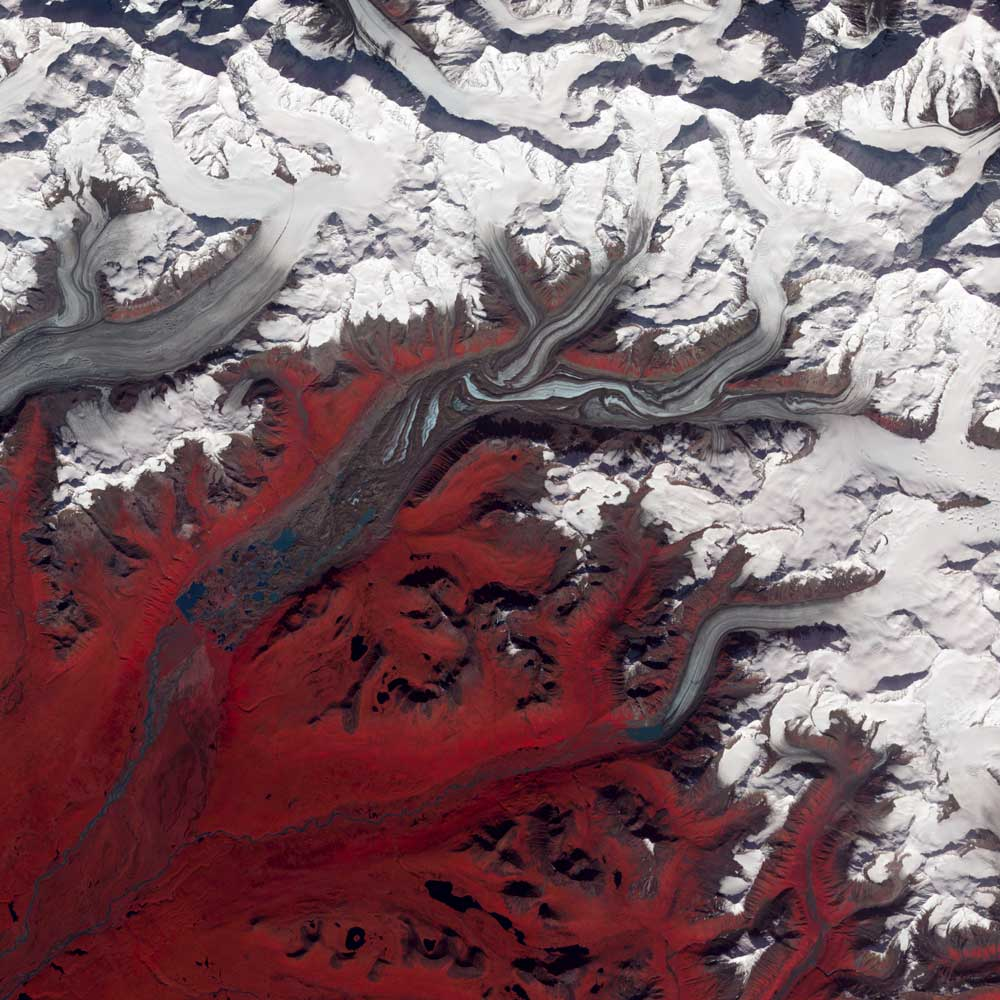 Like rivers of liquid water, glaciers flow downhill, with tributaries joining to form larger rivers. But where water rushes, ice crawls. As a result, glaciers gather dust and dirt, and bear long-lasting evidence of past movements. Alaska's Susitna Glacier reveals some of its long, grinding journey in this image, taken from space on August 27, 2009. The satellite image combines infrared, red and green wavelengths to form a false-color picture. Vegetation is red and the glacier's surface is marbled with dirt-free blue ice and dirt-coated brown ice. Infusions of relatively clean ice push in from tributaries in the north. The glacier surface appears especially complicated near the center of the image, where a tributary has pushed the ice in the main glacier slightly southward. In the lower left corner of this image, meltwater lakes can be seen on top of the ice.