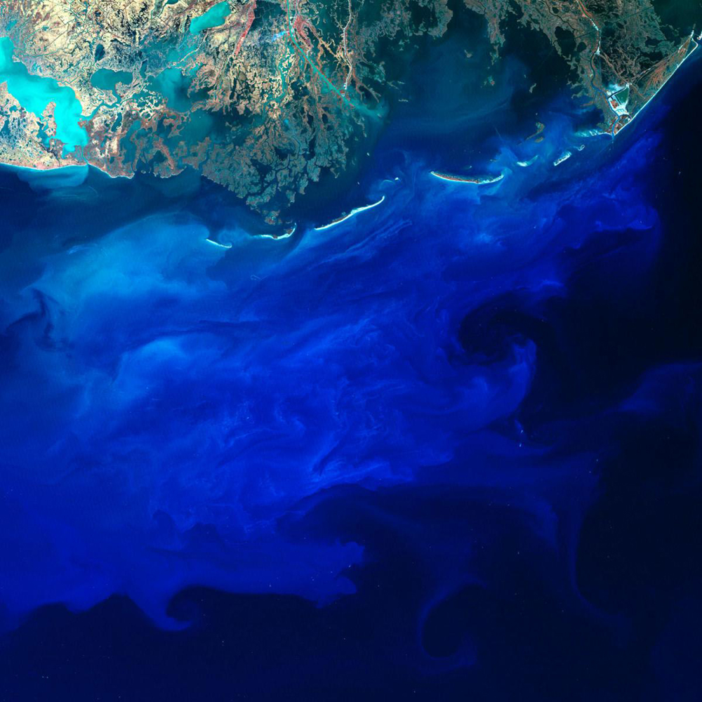 In this image, we see blue silt off the southern coast of Louisiana as the Mississippi River flows off into the Gulf of Mexico. The brightness and shade of blue depends on the density of the silt and the depth of the silt-carrying currents in the water. The small bright dots in the scene are fishing boats and oil platforms.
