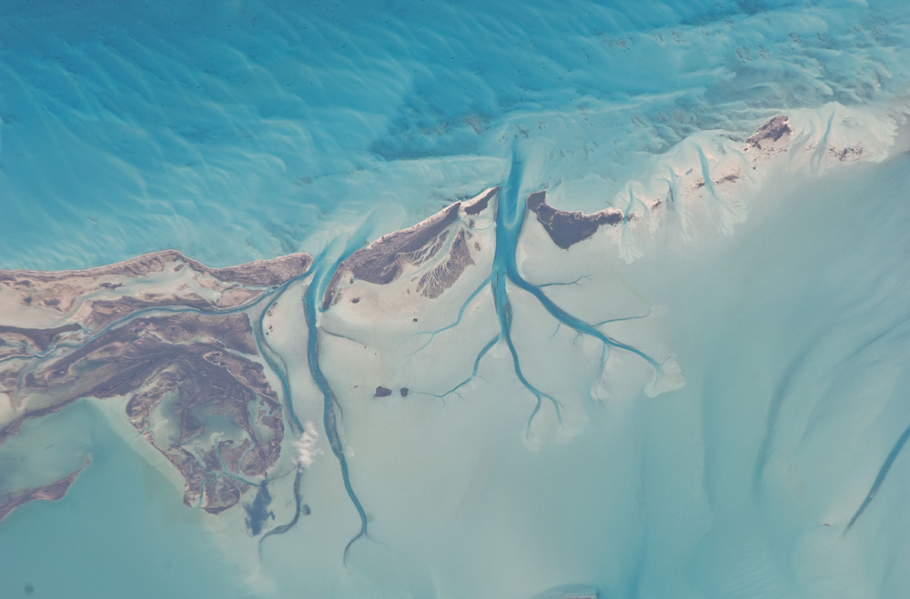 This image, showing tidal flats and channels on Long Island, in the Bahamas, was taken by an Expedition 26 crew member onboard the International Space Station. The islands of the Bahamas in the Caribbean Sea are situated on large platforms made mainly from carbonate sediments ringed by fringing reefs Ᾱ the islands themselves are only the parts of the platform currently exposed above sea level. The sediments are formed mostlyfrom the skeletal remains of organisms settling to the sea floor; over geologic time, these sediments will consolidate to form carbonate sedimentary rocks such as limestone. Darker blue shows deeper water, while light blue-green shows shallow water on the tidal flat. The continually exposed parts of the island are seen in brown, a result of soil formation and vegetation growth (left).